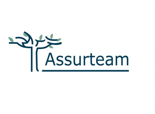 Newsletter Assurteam